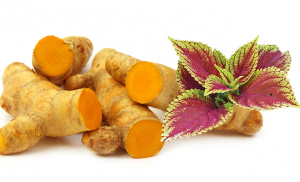 Supplements of turmeric plus are important for sleep induction