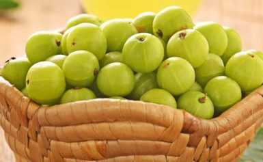How to Buy Powdered Amla Safely Online