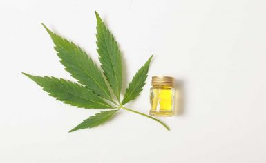 Best CBD oil for pain relief