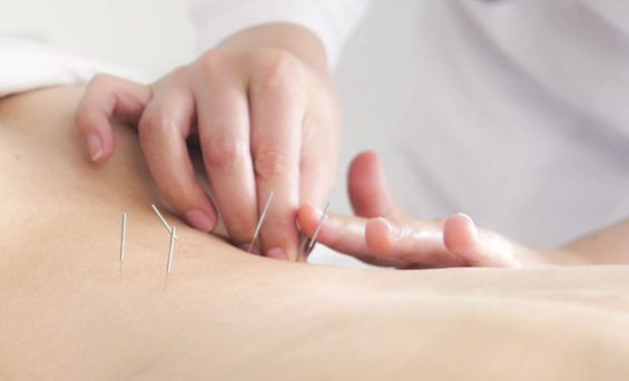 Check out the eight body types with the help of acupuncture theory