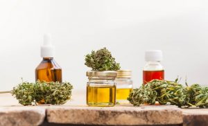 Medical Marijuana – Choosing the Right Sativa Strains in Wheat Ridge, CO