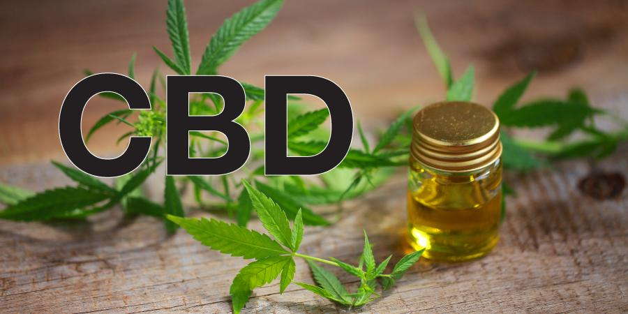 What are the effective ways to use CBD honey?
